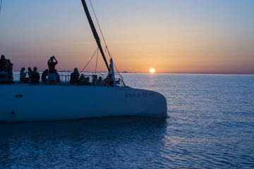 Palma Bay Half Day Catamaran Tour