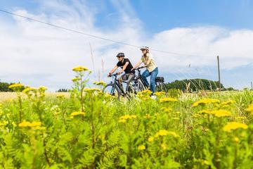 Tour en bicicleta eléctrica por Ayagaures con almuerzo
