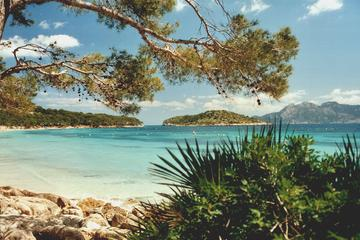 Visit Formentor beach and Majorca's weekly markets