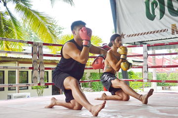 Muay Thai Lesson with Pad Thai Meal