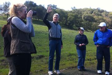 Day Trip Guided Nature Walk and Wine Tasting in Morgan Hill near San Jose, California