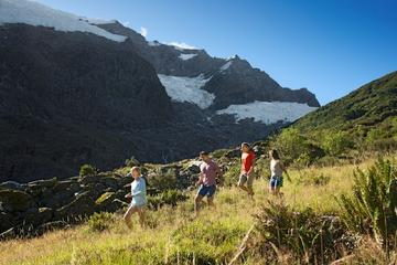 Wanaka Rob Roy Glacier Hike from ...