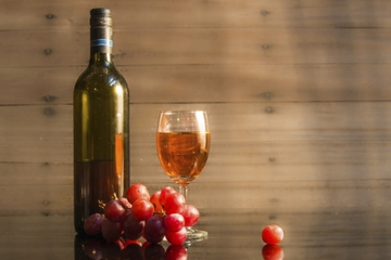 Dégustation de vins et de plats grecs à Athènes