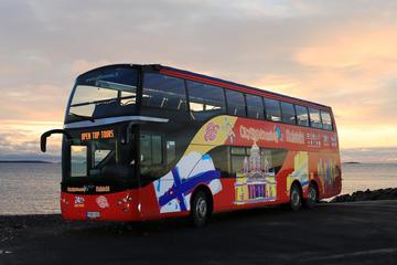 Circuit touristique en bus à arrêts multiples à Helsinki