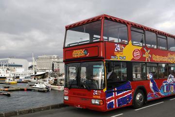 Circuit touristique en bus à arrêts multiples à Reykjavik