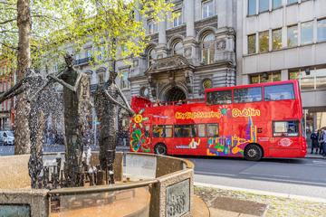 Dublin Shore Excursion: City Sightseeing Hop-On Hop-Off Sightseeing Tour
