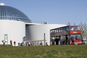 Escursione a terra a Copenaghen: tour Hop-On Hop-Off di Reykjavik con