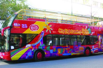 Excursión en autobús con paradas libres por la ciudad de Oslo