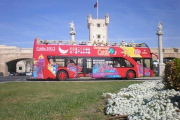 Excursión por la costa de Cádiz: Excursión en autobús turístico con...