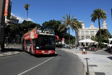 Excursion en bord de mer à Gran Canaria: circuit touristique en bus...