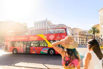 Málaga City Pass: Experience or VIP...