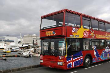 Stadsrundtur i Reykjavik med hoppa på/hoppa av-buss