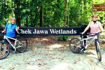 シンガポール発ウビン島半日サイクリング ツアー