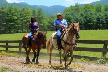 Georgia Horseback Ride with Wine Tasting