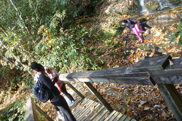 Victoria Bryant State Park Hike with...