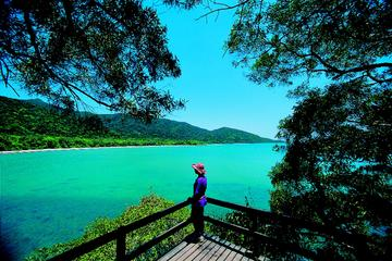 Daintree Rainforest, Cape Tribulation and Rainforest Habitat Wildlife Sanctuary Day Tour