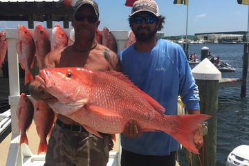 Book Panama City Beach Offshore Fishing on Viator