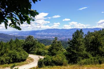 Adventure Chianti Tour: Off-Road 4WD ride outside Florence