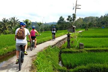 Excursion en vélo électrique d'une demi-journée à Ubud