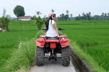 Bali Atv Quad Bike Tour