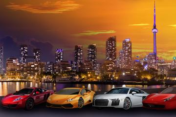 5-Hour Exotic Car Experience including Lunch