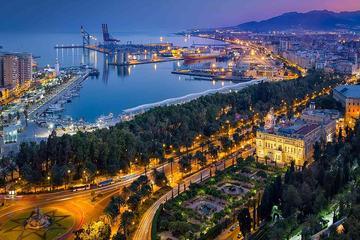 Excursion d'une demi-journée à la découverte de Málaga avec tapas