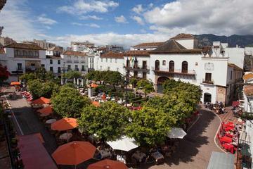 Marbella and Puerto Banús Half-Day...
