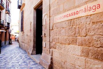 Visita guiada al Museo Picasso de Málaga para grupos pequeños