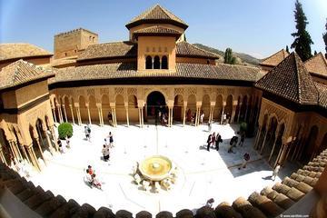 Visite privée de l'Alhambra, des...