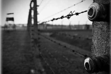 Auschwitz and Birkenau Round-Trip Transfer Premium from Krakow