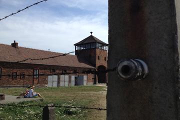 Excursion en petit groupe à Auschwitz-Birkenau avec transport privé...