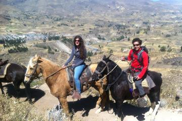 Overnight Tour:Colca Canyon Including Horse Riding