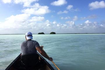 Kayak and Snorkel Combo Tour from Tulum