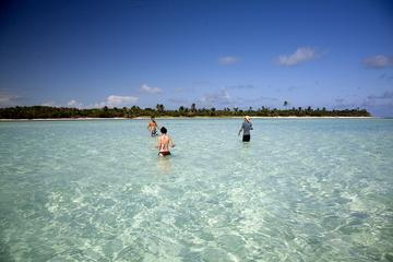 Sian Ka'an Adventure from Tulum Including Snorkeling