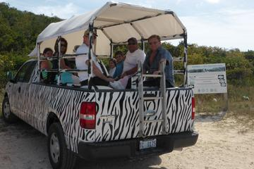 Providenciales Sightseeing Tour...