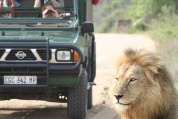 5 day Kruger Park open vehicle safari...