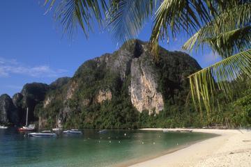 Full-Day Phi Phi Island by Speedboat