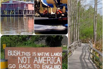 Excursión de 7 horas de duración en Everglades con hidrodeslizador y...