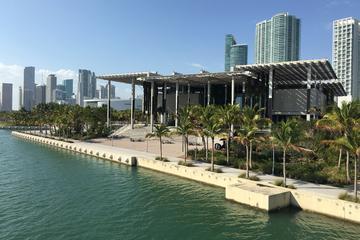 Recorrido privado de medio día por la ciudad de Miami