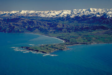 4-Day Akaroa and Kaikoura Tour from Christchurch