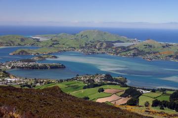 6-tägige Entdeckungstour Südinsel ab Christchurch