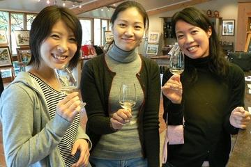 Auckland Landausflug: Tour zu Weingütern an der Westküste