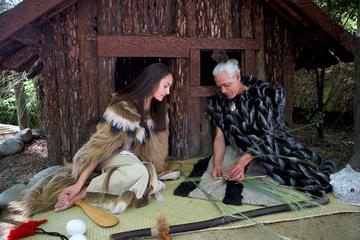 Christchurch-Maori-Konzert und...
