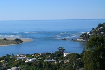 Discover Christchurch Sightseeing Tour with optional International...