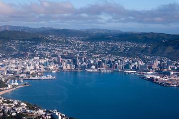 Excursão terrestre por Wellington: excursão turística na cidade