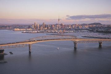 Excursion sur le littoral d'Auckland: tour de la ville, croisière et...
