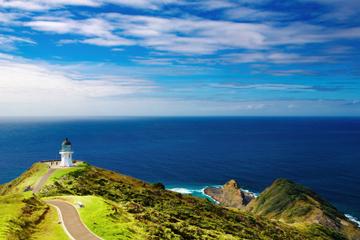 Viagem de 3 dias à Baía das Ilhas saindo de Auckland