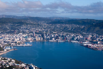 Wellington Shore Excursion: City...