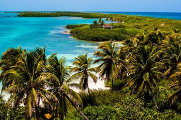Excursión de un día a Isla Contoy e Isla Mujeres desde Playa del...