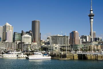 Cruzeiro-almoço em Auckland Harbour